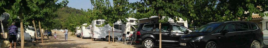 camping con mascotas